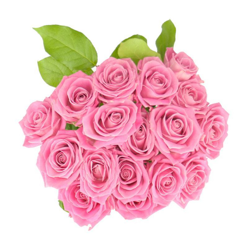 Buchet de  17 trandafiri  roz