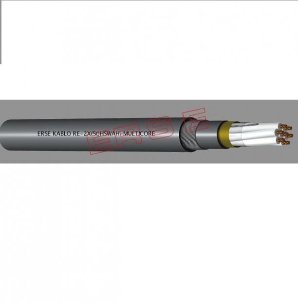 Cablu RE-2X(St)HSWAH (MULTIPAIR)  8 x 2 x 1.5, ERSE