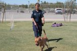 Politia veterinara din Phoenix