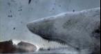 Program tv vineri 2010: Moby Dick Film +