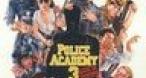 Program tv maine Academia de Politie 3 TNT