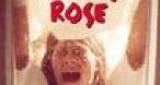 Program tv  Audrey Rose MGM