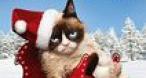 Program tv marti Cel mai groaznic Crăciun Diva
