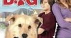 Program tv maine Cop Dog FilmBox Family