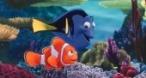 Program tv  În căutarea lui Nemo Disney Channel
