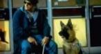 Program tv ieri K-9: Câinele detectiv Antena 1