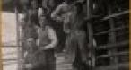 Program tv  Memorialul Durerii - o istorie care nu se învaţă la şcoală TVR International