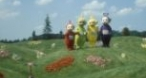 Program tv  Teletubbies BBC Entertainment