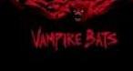 Program tv maine Vampire Bats Pro Cinema