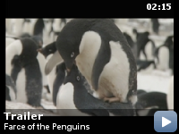 Trailer Amor de pinguin
